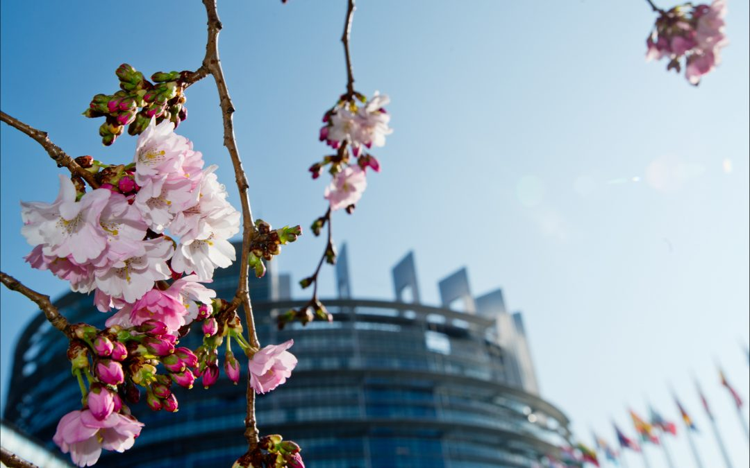 Weekly Editorial: Brussels spring – a momentum to seize